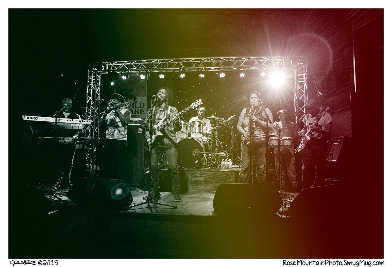 Award Winning Chicago Reggae Band Gizzae - Festivals, Bars, Private